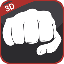 Learn to Fight 3D